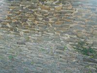 写真6 石塀石垣出津地区の到る処で 目に付く